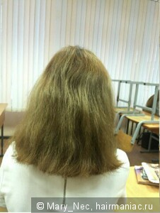 Сухие и жёсткие волосы