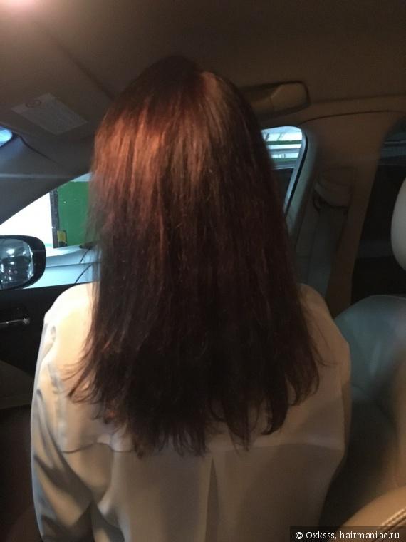 Состояние волос на сентябрь 2017, после стольких окрашиваний