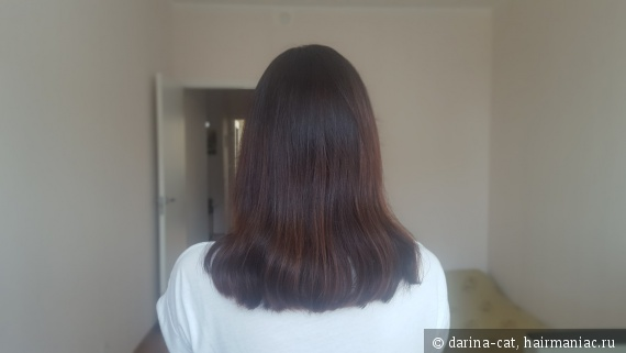 мои волосы сейчас